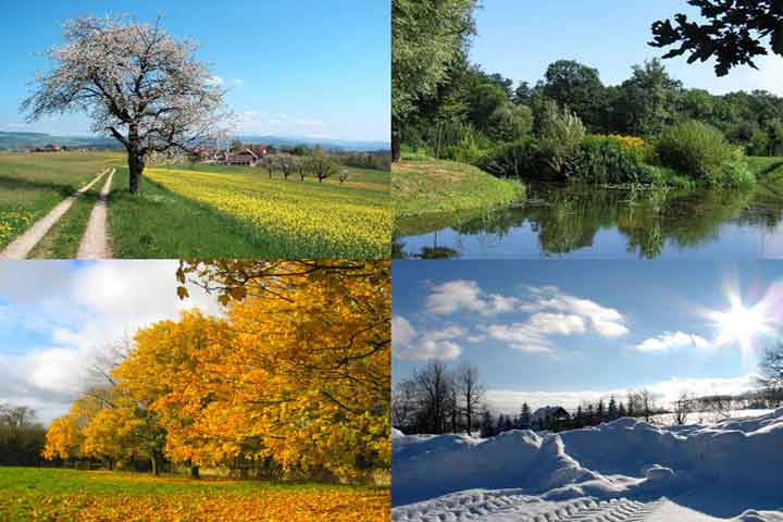 Knowing The Various Seasons Through This Simple Activity
