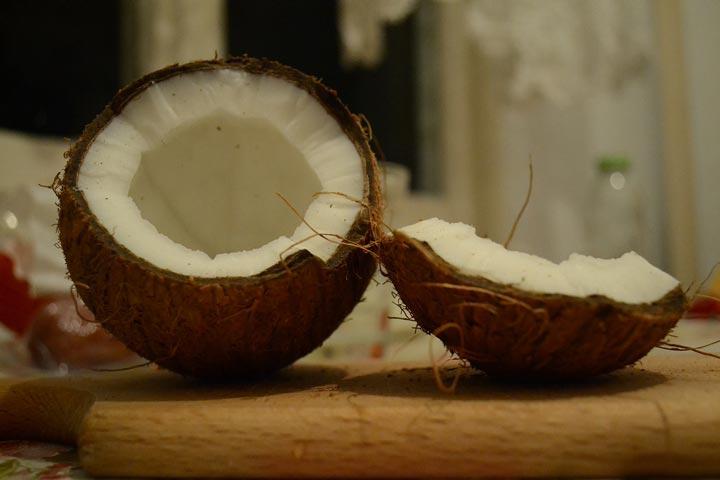 Let's Explore A Coconut