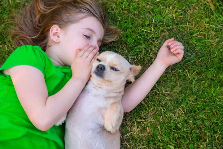 Be A Pet Lover And Assume Your Pets Use Human Speech
