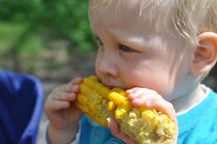 Allow Your Kid To Make Their Own Choice From A Variety Of Healthy Options